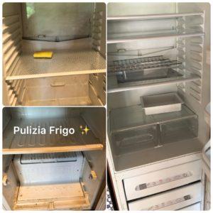 pulizia frigo correggio